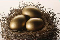 retirement savings nest