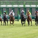 horse race predictor